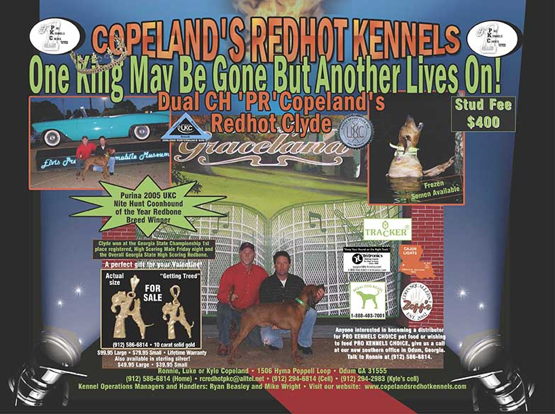 Copelands Redhot Kennels Dual Ch PR Copelands Redhot Clyde at the Purina 2005 UKC Nite Hunt named Coonhound of the Year Redbone Breed Winner